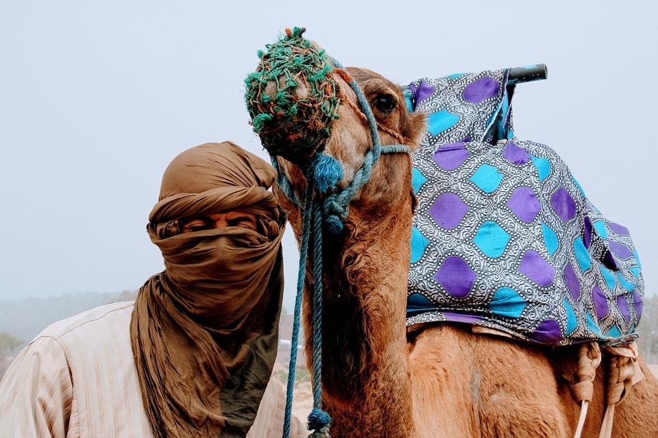 Сидящий на верблюде себя не скроет (казахская)